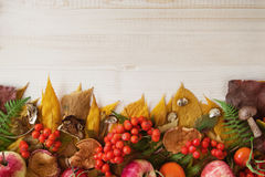 Border from dry autumn leaves, mushrooms, fresh rose hips and rowanberry, fresh and dry apples on the wooden background. Stock Photography