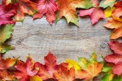 Border of fallen maple leaves on wooden background with copy space. royalty free stock photography