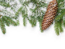 Border from fir twigs, cone and fake snow Stock Photos