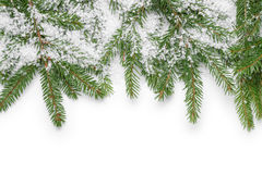 Border from fir twigs and fake snow stock photography
