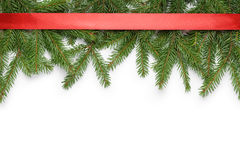 Border from fir twigs and ribbon with shadow Royalty Free Stock Photography
