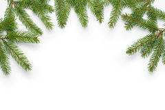 Border from fir twigs with shadow Stock Images