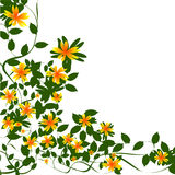 Border floral Royalty Free Stock Image