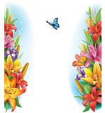Border from flowers. And butterfly Stock Photography