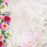 Border of flowers on a gentle background Stock Photo