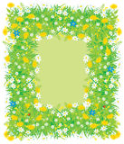 Border of flowers and grass. Vector frame for your photo and text made of wild flowers and grass Stock Images