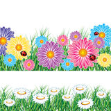 Border of flowers and herbs with ladybird Royalty Free Stock Image