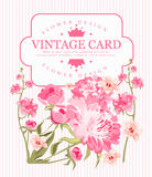 Border of flowers peony in vintage style. Vector Stock Photos