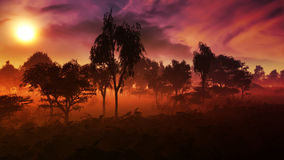 Border Of Forest Epic Sunset. Village with with beautiful vast plants in the mist of the evening with clear warm sky and tree, house and a village with green Royalty Free Stock Photos