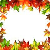 Border frame autumn leaves isolated on white Royalty Free Stock Image