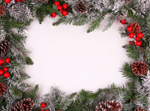 Border, frame from christmas tree branches with pine cones. And holly berries Stock Photos