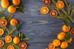 Border, frame from Christmas tree fir branches, dried orange fru Stock Images