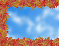 Border Frame of colored falling maple leafs with copy space on b Stock Photo