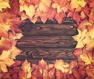 Border frame of colorful autumn leaves on natural textured wooden background Royalty Free Stock Photo
