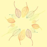 Border frame of colorful autumn leaves. On yelow background Stock Image