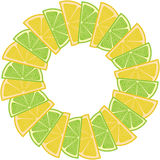 Border frame with lemon and lime Royalty Free Stock Image