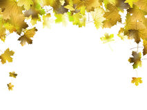 Free Border Frame Of Colorful Autumn Leaves. EPS 10 Royalty Free Stock Images - 34738619