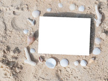 Border frame summer beach shell blank copy space. Border summer shells frame composition over beach sand beach with blank paper stock images