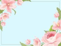 Border frame template corners rose sakura magnolia Royalty Free Stock Photos