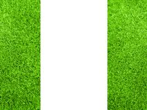 Border from fresh grass Stock Images