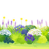 Border garden. Natural garden pattern by watercolor paint touch vector illustration