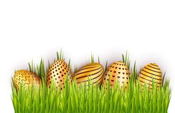 Border from golden decorated Easter eggs in fresh green grass isolated on white background. Vector illustration. vector illustration