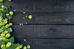 Border from green hop branches on dark rustic wooden background. Royalty Free Stock Photos
