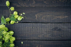 Border from green hop branches on dark rustic wooden background. Royalty Free Stock Photography