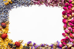 Border of healthy herbs and herbal tea assortment on white Royalty Free Stock Images