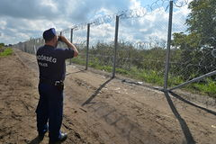 Border. Hungarian police officer guards the border with Serbia Stock Image