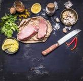 Border Ingredients for cooking concept Turkey meat on a paper for a steak knife grated lemon herbs garlic pepper salt  on rustik w Stock Images