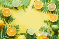 Border leaves of fern and tropical friuts, orange, lemon, lime on yellow. Top view. Summer travel concept. Border leaves of fern and tropical friuts, orange royalty free stock photo