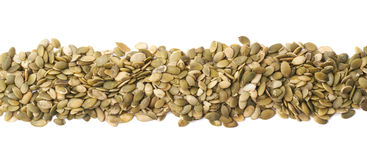 Border line made of pumpkin seeds Stock Images
