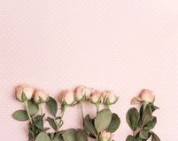 Border of little rose on a pink polka dot background. Place for text. Flat lay, top view stock photos