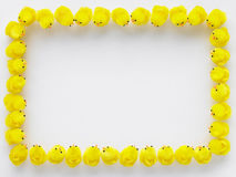 Border Made Of Easter Chicks Royalty Free Stock Photo
