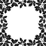 Border of oak branches, black contours Stock Photos