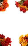 Border Of Autumn Flowers Royalty Free Stock Photography