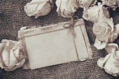 Border Of Dry White Roses, Stack Of Old Postcards, Sepia Image Stock Image
