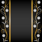 Border with pearls Stock Image