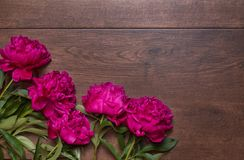Border of peonies on a wooden background. Floral design. Pink and purple spring flowers. View from above, flat lay, top view Stock Photo