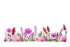 Watercolor Floral Pattern Royalty Free Stock Images