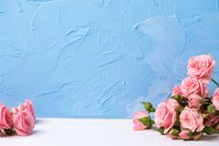 Floral still life. Royalty Free Stock Photo
