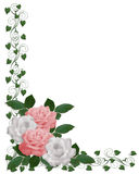border pink roses wedding white stock illustrationer