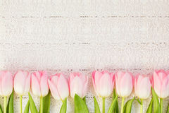 Border of pink tulips on white vintage tablecloth. Top view Stock Images