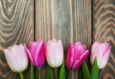 Border with pink tulips Royalty Free Stock Photography