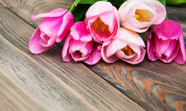 Border with pink tulips Stock Photography