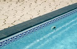 Border between pool and a lawn Royalty Free Stock Photography