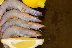 Border of raw prawns. Border of fresh  raw prawns with ice  and spicies on black background with copy space Stock Images