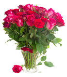 Border of red and pink roses Royalty Free Stock Images