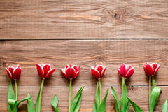Border of red tulips. Flowers on wooden background. Copy spase. Stock Photo